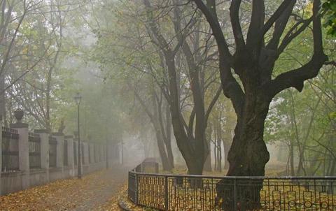 Синоптики попереджають про туман у Києві 14 листопада