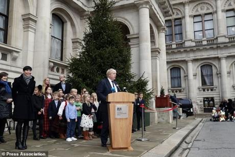 Норвегія подарувала МЗС Британії велику різдвяну ялинку