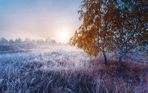 У Львівській область від переохолодження загинули 3 людини