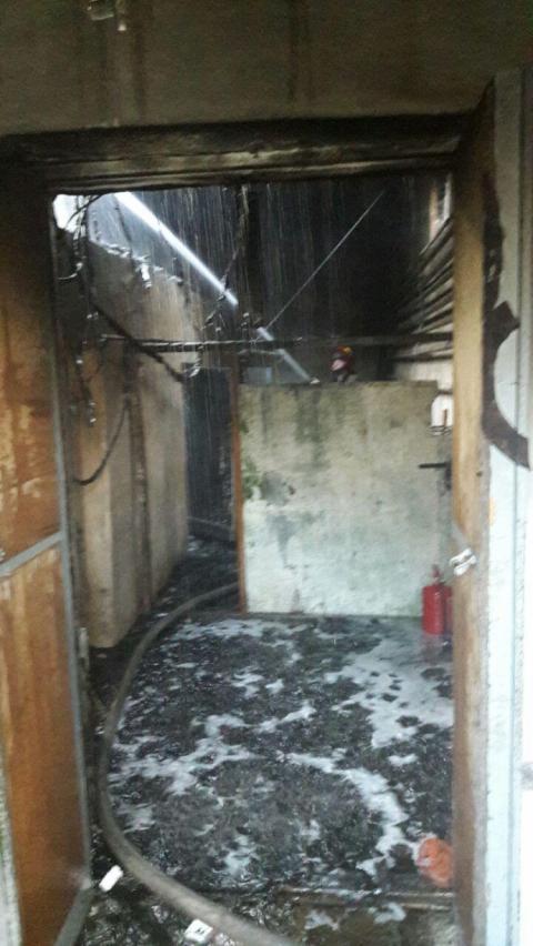 У київському зоопарку сталася пожежа