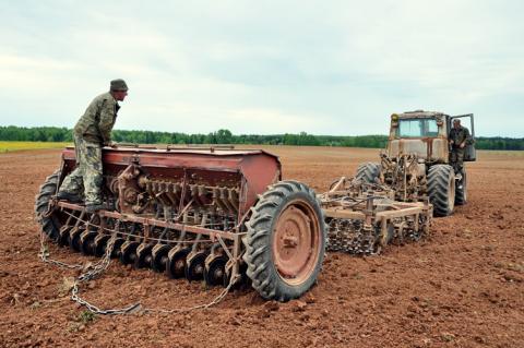 Як аграрію не втратити право оренди ділянки — поради юриста