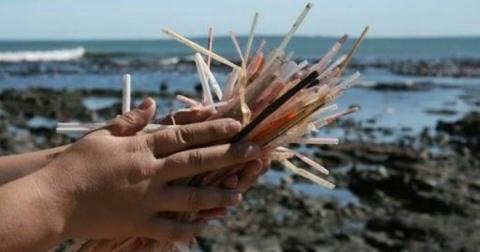 У Британії заборонять пластикові палички й соломинки