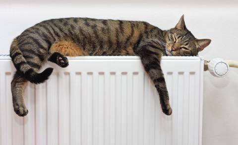 Власникам квартир можуть дозволити відмовлятися від опалення