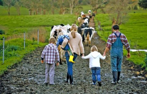 Членів фермерських господарств зобов'язали сплачувати ЄСВ