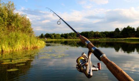 Правники позмагаються у вмінні ловити рибу