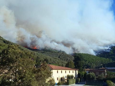 В Італії вчора спалахнула масштабна лісова пожежа, евакуйовано близько 500 людей