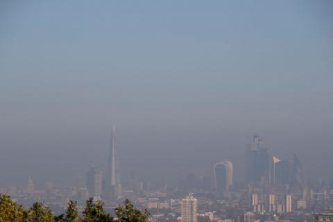 Забруднення повітря підвищує ризик виникнення раку горла, – дослідження