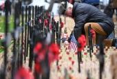 Сьогодні у Лондоні відкриють «Поле пам'яті» з нагоди сторіччя закінчення Першої світової