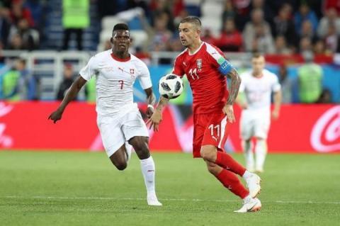 Капітан збірної Сербії: Путівки на Євро-2020 розіграють Португалія, Україна і Сербія
