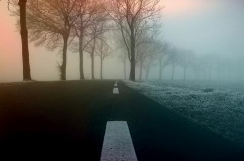 Туман, паморозь та ожеледиця – синоптики попереджають про погіршення породи