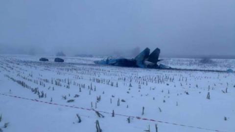 Голанці оприлюднили фото катастрофи Су-27 на Житомирщині