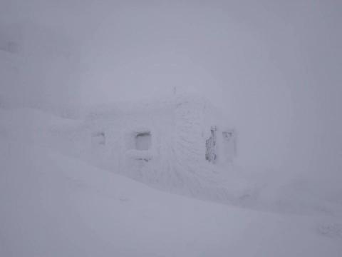 Хмари торкнулись землі: На горі Піп Іван у Карпатах низька видимість та мороз