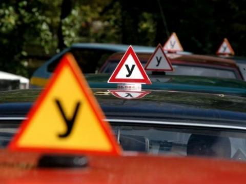 Автошколу, в якій навчалася винуватиця смертельної ДТП Олена Зайцева, можуть закрити