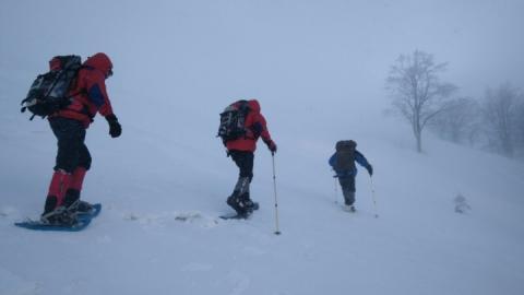 В Карпатах п'яту добу шукають заблукалого лижника