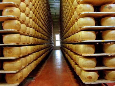 У Словаччині затримали українця, який віз 1,5 тонн контрабандного сиру