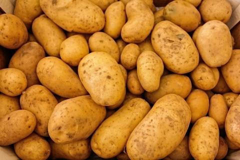 У Польщі картопля стає «золотою»: подорожчала на 75%