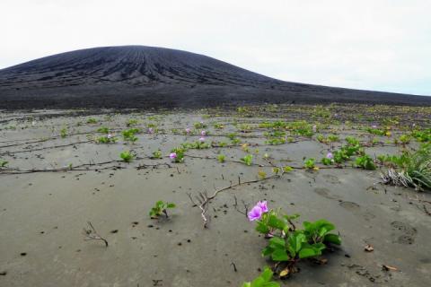 Загадкове багно на новому вулканічному острові спантеличило науковців НАСА
