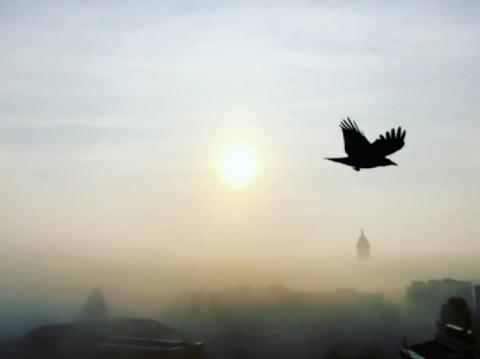 Метеорологи переконують, що українці дарма панікують: смогу немає