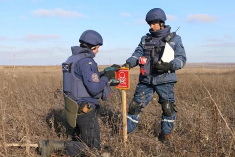 В районі Петрівського розмінували 12 гектарів території
