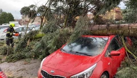 Ураган у Чехії: повалені дерева, пошкоджені авто і 15 тисяч будинків без світла