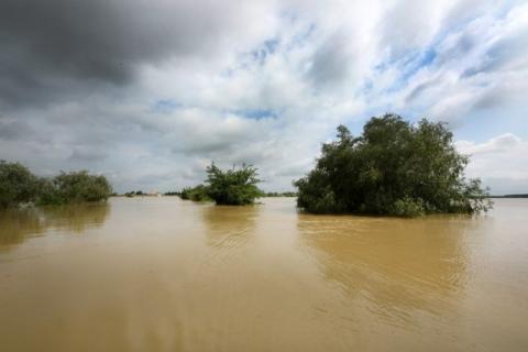 У Сербії через повені оголосили надзвичайний стан у семи муніципалітетах