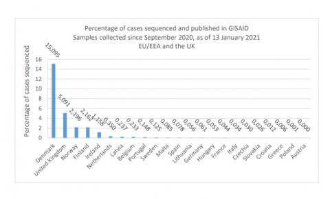 """У Данії """"британський"""" штам вірусу становить вже 7% досліджених випадків"""