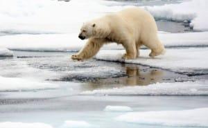Данія збільшить видатки на оборону в Арктиці