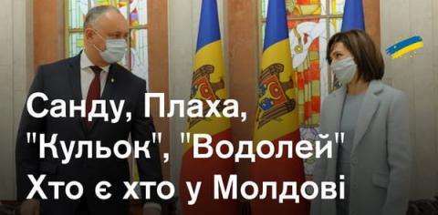 """""""Усатий блок"""": у Молдові створили новий політичний союз для парламентських виборів"""