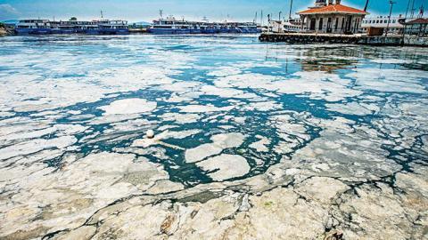"""Мармурове море вкрилося """"слизом"""" вздовж узбережжя Туреччини"""