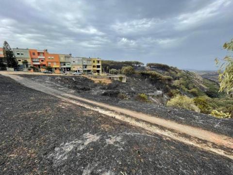 На Сардинії частково взяли під контроль пожежі, на відновлення лісів піде 15 років