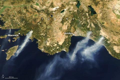 Лісові пожежі на півдні Туреччини показали з космосу