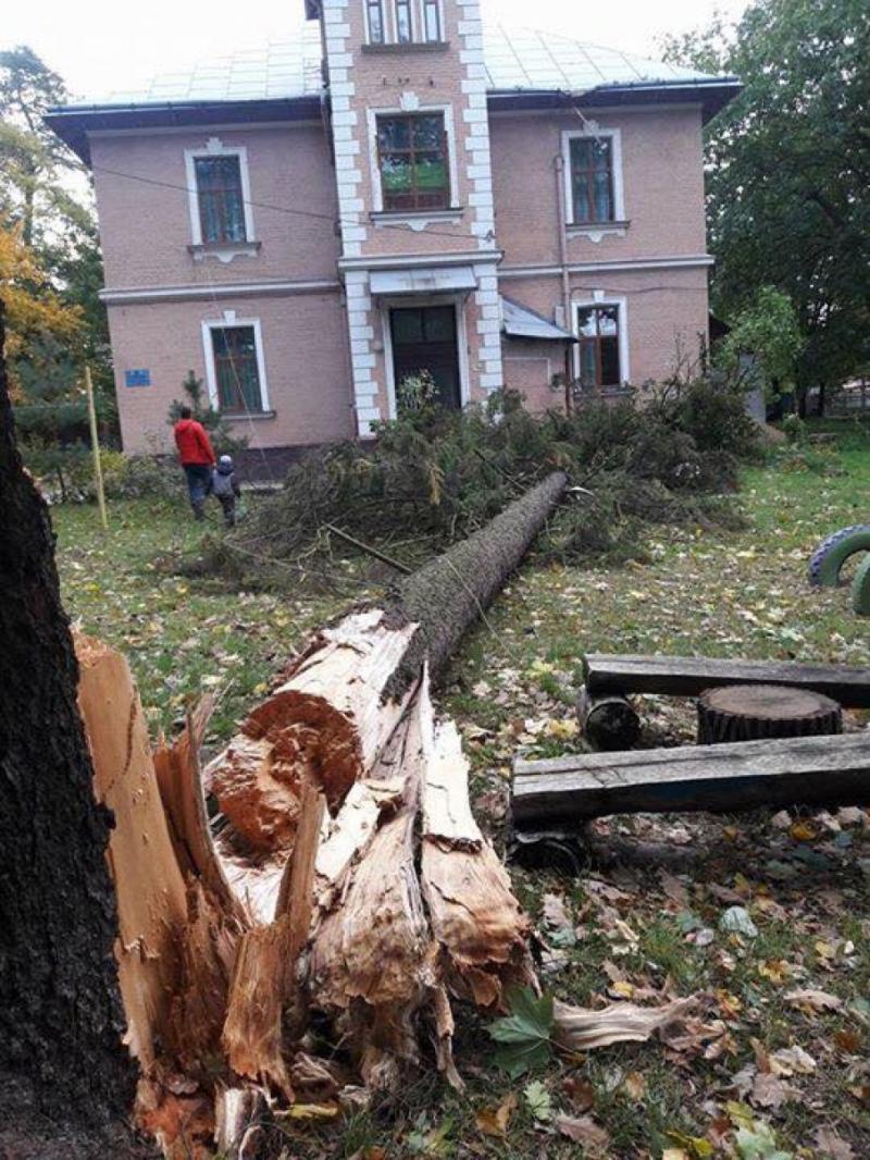 Майже 200 населених пунктів на заході України знеструмлені через стихію