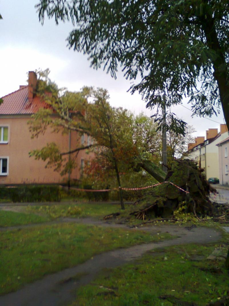 Внаслідок шторму «Ксав'єр» у Польщі – 2 загиблих, 39 травмованих, 714 тис. осіб без електрики