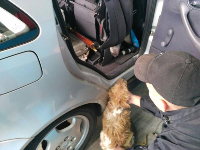 На «Раві-Руській» службовий пес знайшов гвинтівку під набій Флобера