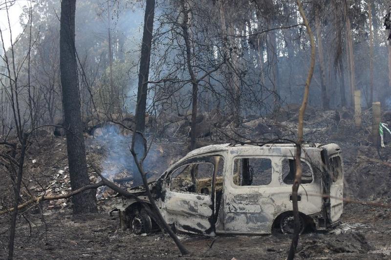 Кількість загиблих під час лісових пожеж у Португалії та Іспанії збільшилася до 45 осіб