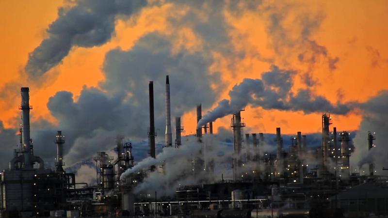 В ООН назвали кількість людей у світі, які помирають від забруднення навколишнього середовища