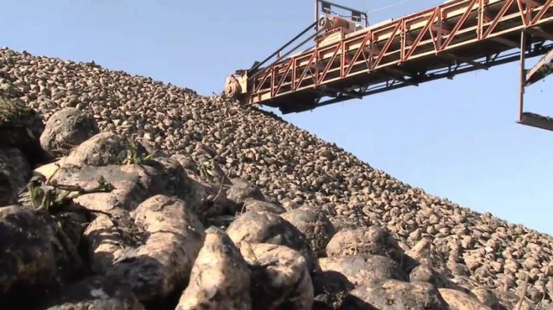 В Україні зростуть ціни на цукор