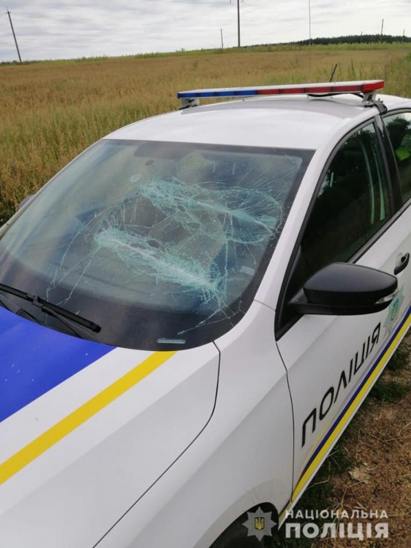 Забризкали сльозогінним газом та пошкодили авто: На Київщині скоєно напад на поліцейських