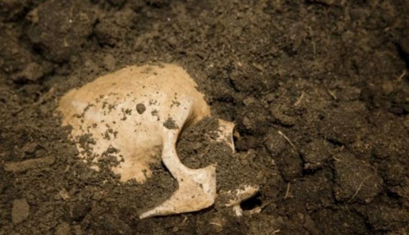 Жителька Харківщини виявила людські останки у новопридбаному будинку