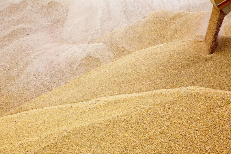 В Україні зібрали понад 42 млн тонн зерна