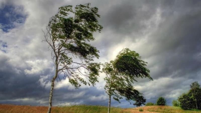 В Україні 1 жовтня очікуються сильні пориви вітру, - синоптики