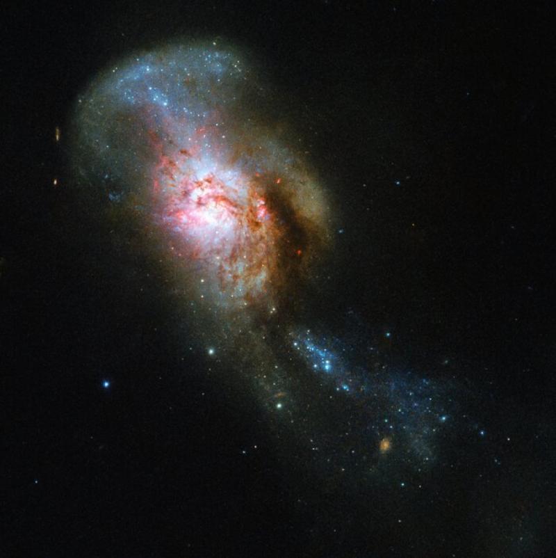 """Телескоп Hubble зняв """"Медузу"""" в космосі"""