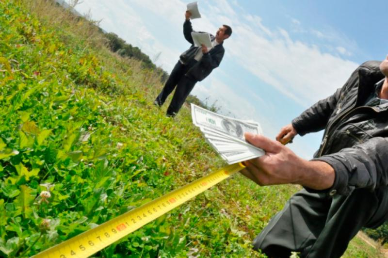 Безкоштовна земля: Хто і як може отримати ділянку в Україні