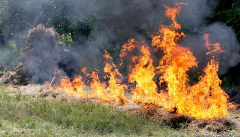 На сході та в центрі України оголошено про пожежну небезпеку