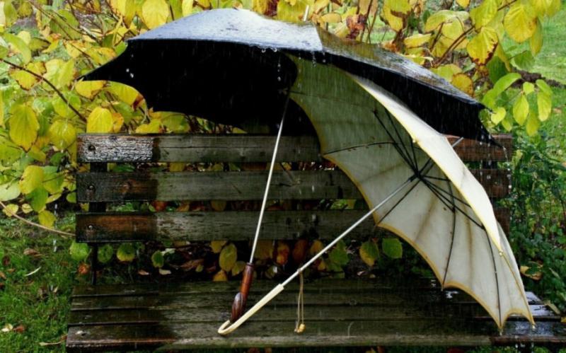 Погода на 4 листопада: В Україні очікується потепління до +21, на заході пройдуть дощі