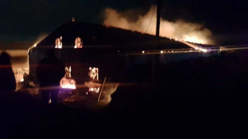 Пожежа на фермі: Близько 10 тис. кроликів згоріли у Саратовській області