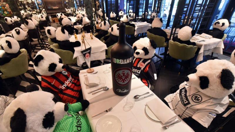Панда-мія: німецький ресторан виступив проти локдауну з сотнею плюшевих панд замість відвідувачів