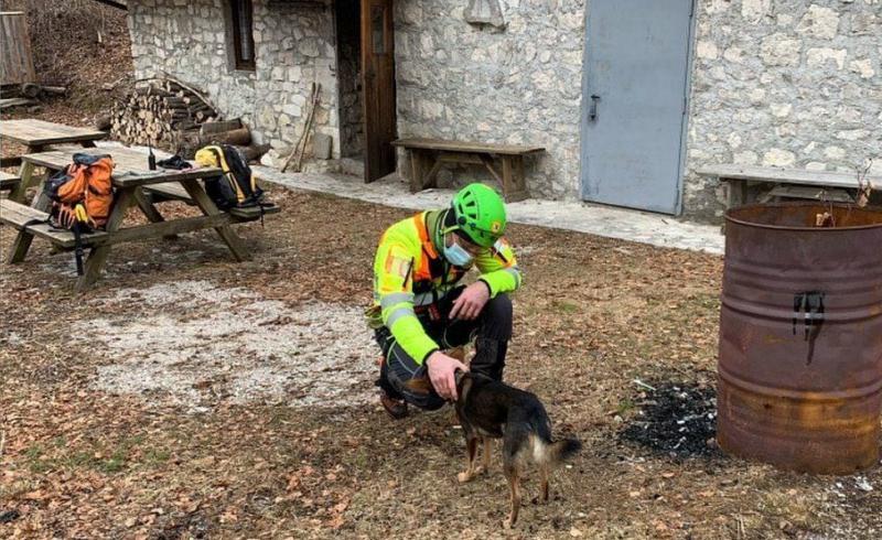 В Альпах врятували туриста із собакою, який зламав ногу і сім днів провів в горах
