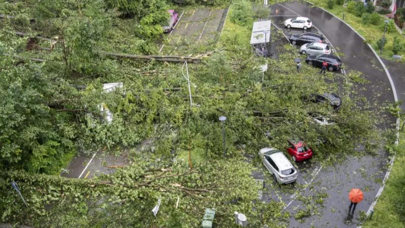 Шторми і грози в Австрії та Німеччині: повалені дерева, хаос на дорогах
