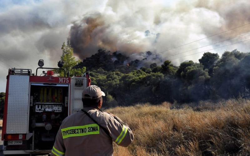 У Греції продовжують боротись з кількома осередками лісових пожеж